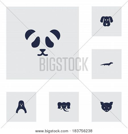 Set Of 6 Beast Icons Set.Collection Of Hog, Trunked Animal, Bear And Other Elements.