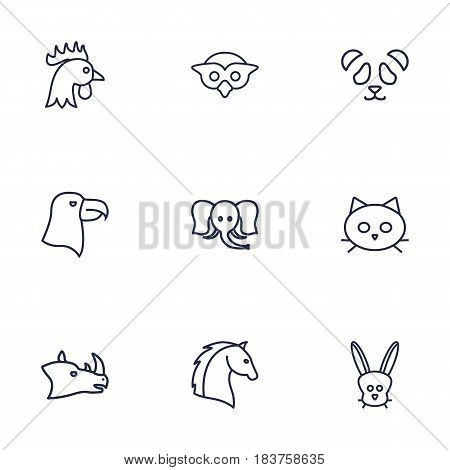 Set Of 9 Brute Outline Icons Set.Collection Of Horse, Eagle, Owl And Other Elements.