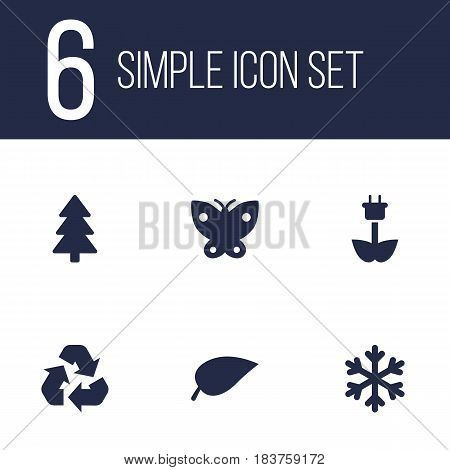 Set Of 6 Nature Icons Set.Collection Of Spruce, Foliage, Winter Snow And Other Elements.
