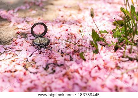 Springtime Pocket Watch Love with Pink Flower Petals