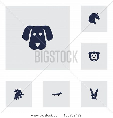 Set Of 6 Beast Icons Set.Collection Of Bunny, Ape, Gecko And Other Elements.