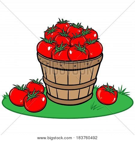 A vector illustration of a bucket of ripe Tomatoes.
