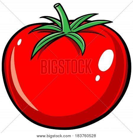 A vector illustration of a ripe Tomato.