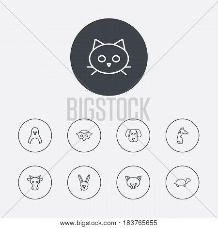 Set Of 9 Alive Outline Icons Set.Collection Of Owl, Pig, Dog And Other Elements.