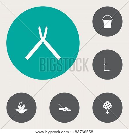 Set Of 6 Household Icons Set.Collection Of Garden, Bucket, Lawn Mower And Other Elements.