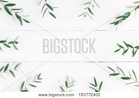Eucalyptus on wooden white background. Frame made of eucalyptus branches. Flat lay top view