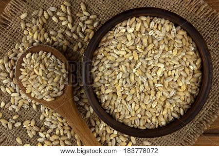 Raw organic pearl barley into a bowl on the table with a wooden spoon