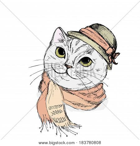 Portrait of cat with big eyes in a Elegant women's hat and scarf. Vector illustration.