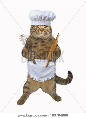 The cat cook is holding a rolling pin and a egg beater. He wears a chef hat and a white cook apron. White background.