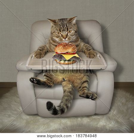 The hungry cat with a bed tray is sitting on a armchair. He is going to eat a mouse burger.