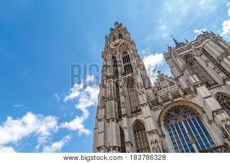 Belfry Tower In Antwerp