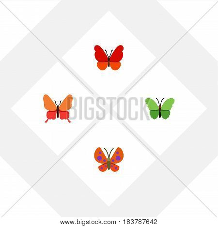 Flat Moth Set Of Milkweed, Moth, Monarch And Other Vector Objects. Also Includes Butterfly, Moth, Monarch Elements.