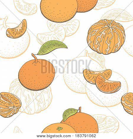 Mandarin fruit graphic color seamless pattern sketch illustration vector