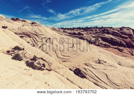 Sandstone formations in Utah, USA. Yant flats