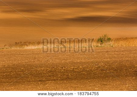 Freshly ploughed agricultural land. Large-scale production agribusiness food production concept and textured background with copy space.