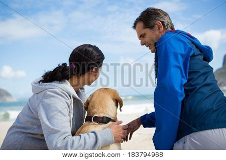 Smiling couple with their pet dog on beach