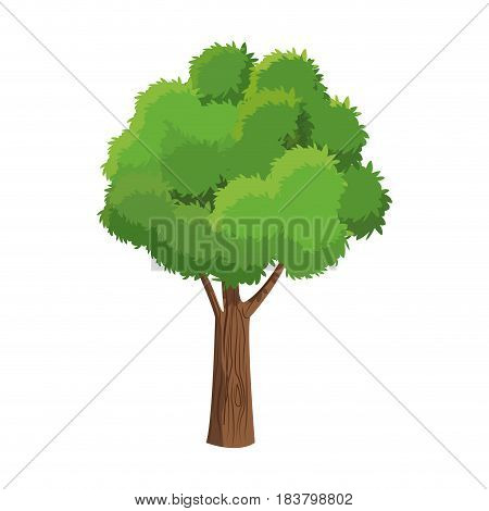 tree foliage branch over white background vector illustration