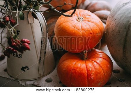 Rero fall stillife with pumpkins and vase for background