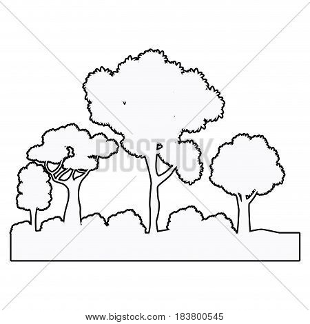 forest tree bsuhes natural ecosystem outline vector illustration