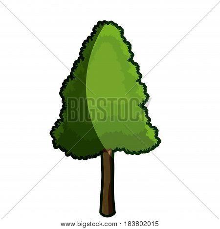 tree foliage wood organic botanic garden shadow vector illustration