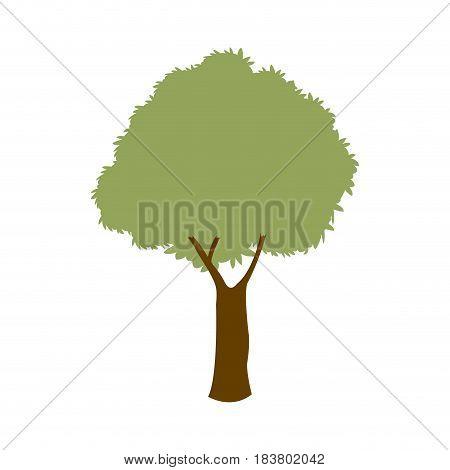 green tree branch foliage nature vector illustration