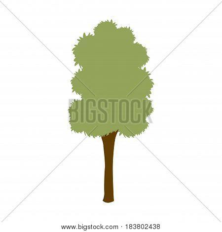 green tree foliage plant natural ecology vector illustration