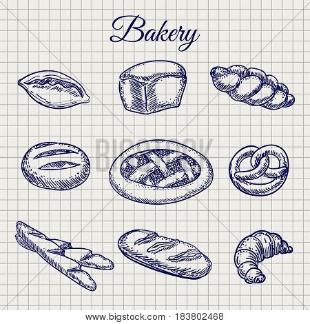 Hand drawn bakery products. Vector bread, bun, baguette etc on notebook page background