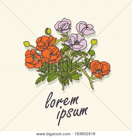 Bouquet of poppies and place for text. Vector greeting card.