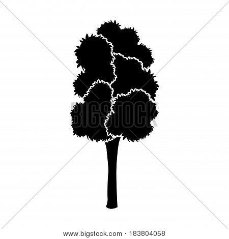 black tree silhouette leaf foliage natural image vector illustration