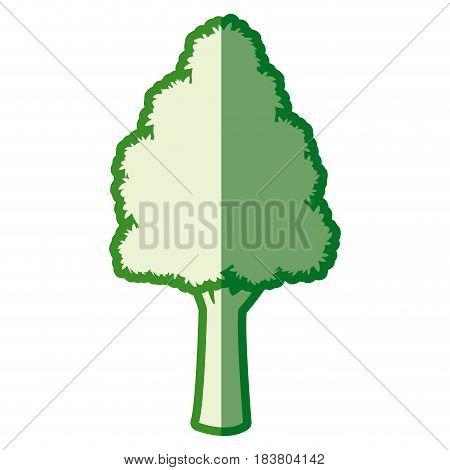 green tree foliage nature plant silhouette vector illustration