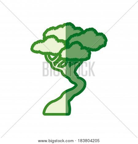 green tree bonsai decorative silhouette vector illustration
