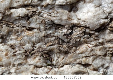 Macro photo of weathered mica minerals in coarse grained quartz rock.