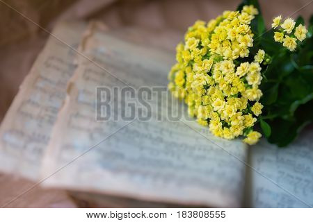 Abstract vintage music background yellow flowers on yellowed old music book with worn paper, antique music sheet. Concept of romantic melody, forgotten and unforgotten past