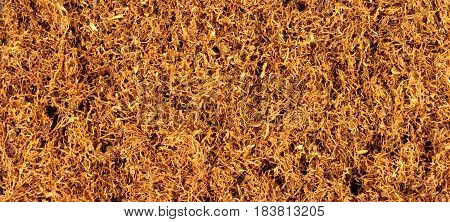 Dried shredded hand rolling smoking tobacco background