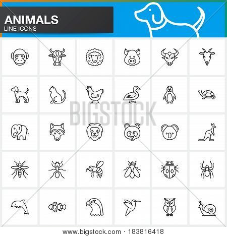 Line Icons Set For Resume Or Cv. Outline Vector Symbol Collection, Linear Pictogram Pack Isolated On