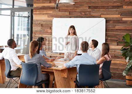 Mid adult woman giving a presentation to business colleagues