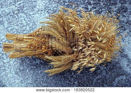 Dry bouquet of wheat lying on ice