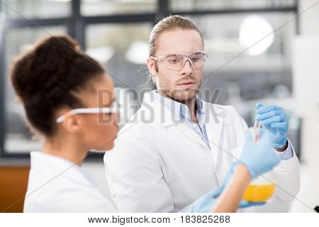 Side View Of Concentrated Scientists Analyzing Test Tube In Laboratory