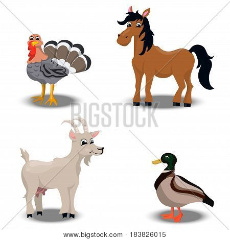 trendy vector set of a happy horse, duck, turkey for thanksgiving Celebration Design, goat. Farm animals collection