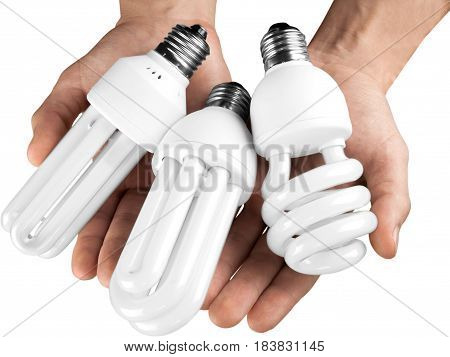 Two Hands Holding Three Energy Efficient Bulbs - Isolated