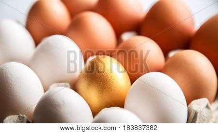 Golden Egg With Eggs In Carton Egg Tray Close-up