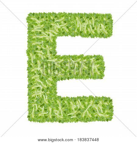 Letter E alphabet with hydroponics leaf ABC concept type as logo isolated on white background
