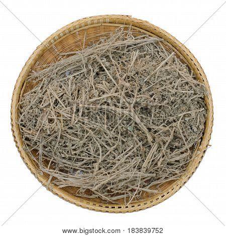 Thai herb scientific name Artemisia annua L. isolated on white background