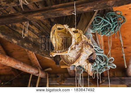 The dried fish is hanging in wooden house