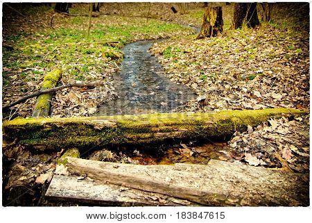 Log through a stream, the Moscow park in the spring