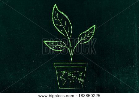 Leaves Growing From A Vase With World Map On It