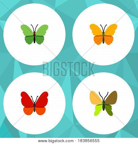 Flat Moth Set Of Beauty Fly, Butterfly, Milkweed And Other Vector Objects. Also Includes Milkweed, Moth, Butterfly Elements.
