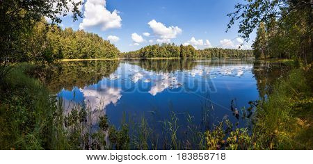 Panoramic view of a summer forest lake