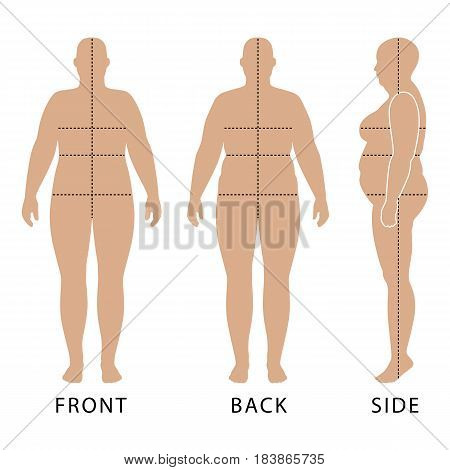 Full length front back side view of a fat standing naked woman outlined silhouette with marked body's sizes lines isolated on white background. Vector illustration. You can use this image for fashion design and etc.