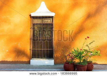 Orange colonial wall and window with three potted plants in Valladolid Mexico